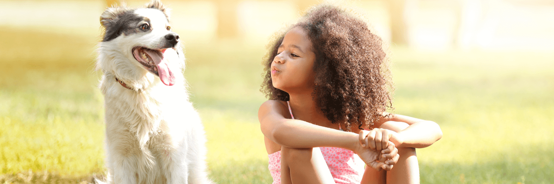 Pet Insurance Massachusetts