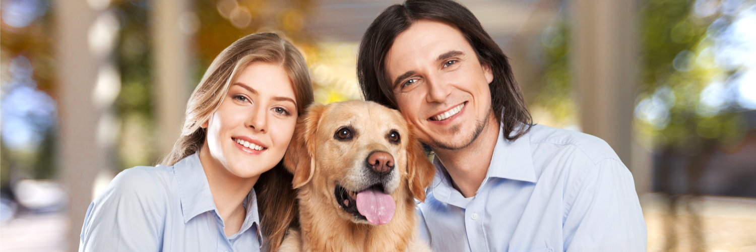 Pet Boarding Insurance Massachusetts