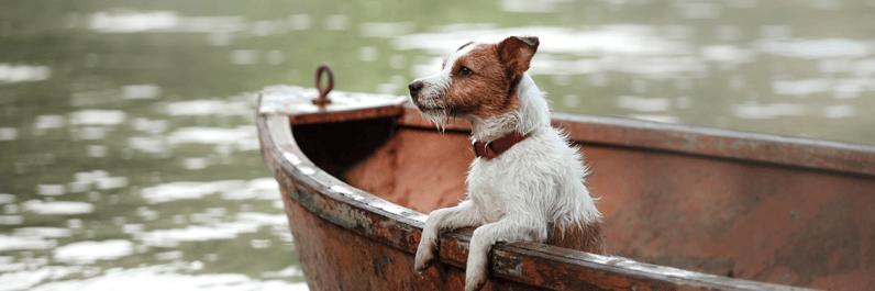Boat Insurance Massachusetts
