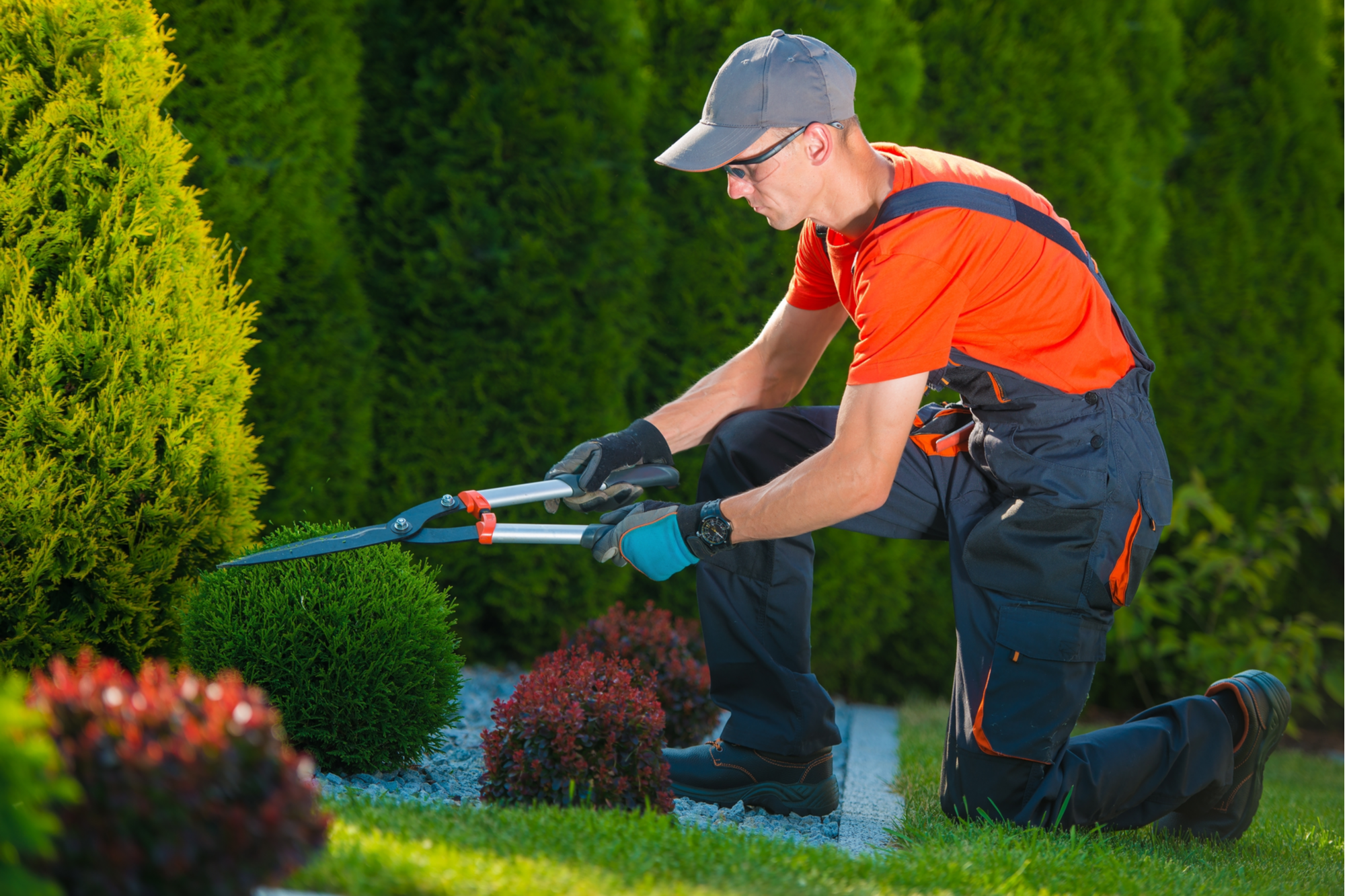 Landscaping Insurance Massachusetts